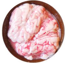 豚の脳みそ